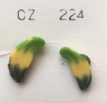 orecchini fimo banana