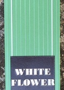Satya white flower