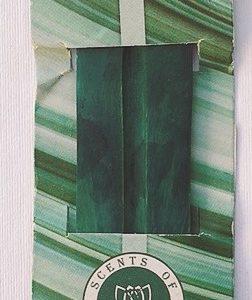 brucia bastoncini Verde