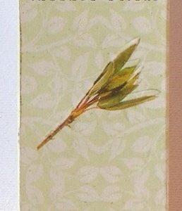 Incenso Salvia Bianca