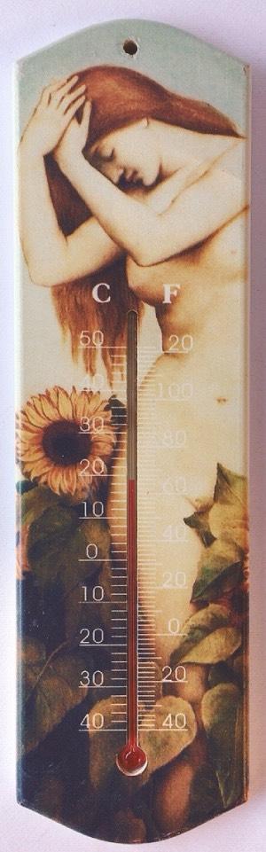 termometro artistico